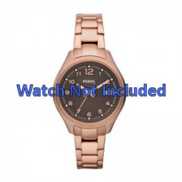 Correa de reloj Fossil AM4366