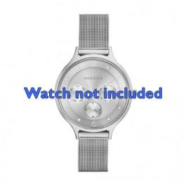 Skagen correa de reloj SKW2312 Acero Palteado 14mm