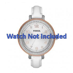Correa de reloj Fossil AM4362
